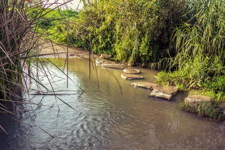 across: Stepping stones across stream