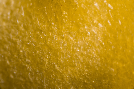 the kernel: Yellow Peppers kernel under the microscope.