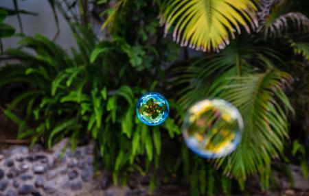 Soap bubbles fly in the garden.