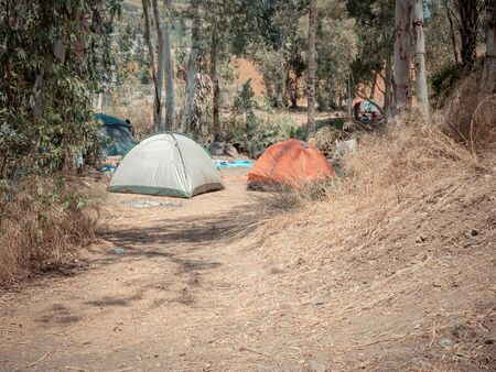 Many dome tents at a camping site near the Eucalyptus trees in Jordan Valley of Israel. Adventure vacation near the Jordan River on a sunny summer day. A sign symbolizing swimming is prohibited. Stock fotó