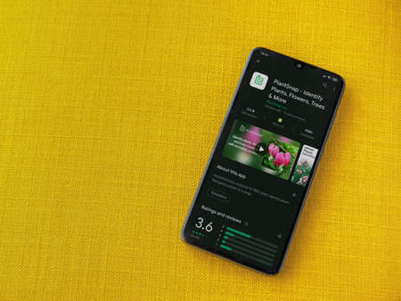 Lod, Israel - July 8, 2020: PlantSnap app play store page on the display of a black mobile smartphone on a yellow fabric background. Top view flat lay with copy space.