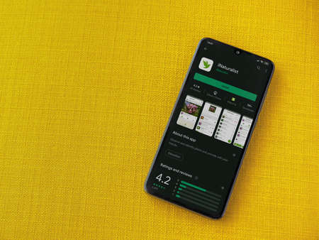 Lod, Israel - July 8, 2020: iNaturalist app play store page on the display of a black mobile smartphone on a yellow fabric background. Top view flat lay with copy space.