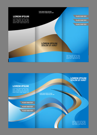 TriFold Brochure Empty Vector Template Design Print Booklet
