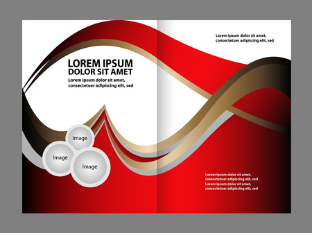 gender identity: Vector brochure template design with elements
