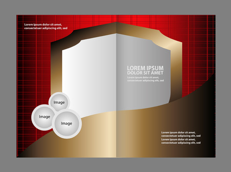 publisher: Professional business flyer, corporate brochure design template