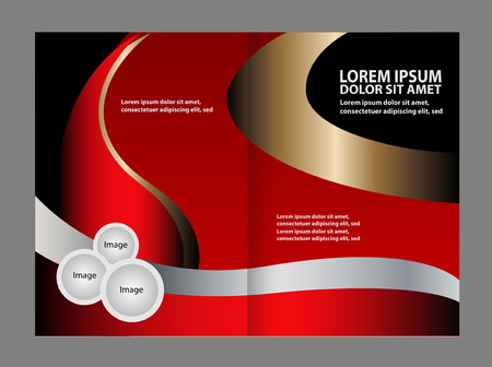 gender identity: Abstract Vector brochure template design with blue and black