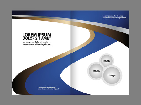 spreads: Vector illustration Corporate Brochure Fold bi