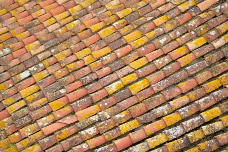 alignement: alignement of tiles on a roof