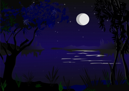 romantic moonlight Stock Vector - 17325962