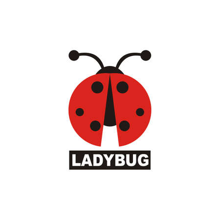 ladybug design vector white background - animal - insect