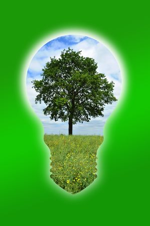 An illustration of a tree into a light bulb for environmental concept Stock Illustration - 7375680