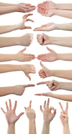 preguntando: Conjunto de muchas manos diferentes aislados sobre fondo blanco