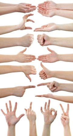 Set of many different hands isolated on white background