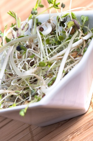 macrobiotic: Close up of mixed beansprouts in a white bowl on a bamboo placemat. Stock Photo