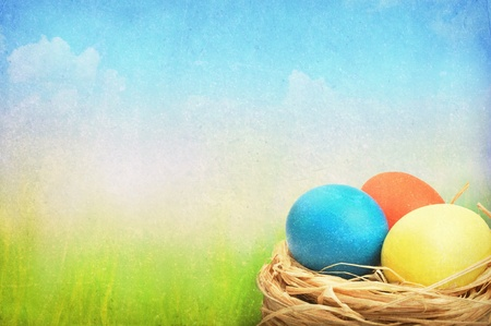 Grunge easter background. Easter eggs in nest on meadow. Stock Photo - 12285124