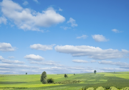 Rural landscape with green hill and blue sky in Poland Stock Photo - 14248736