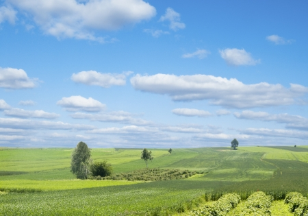 Rural landscape with green hill and blue sky in Poland Stock Photo - 14248738