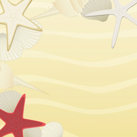 Vector beach background with starfishes and shells Vector