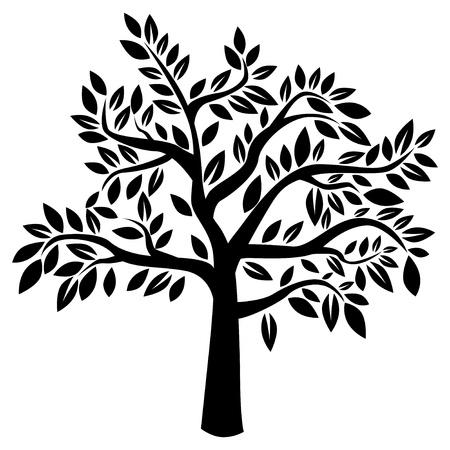 arboles blanco y negro: Silueta de árbol en el fondo blanco Ilustración vectorial