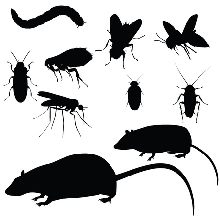 Collection of vector pests, silhouettes on white background