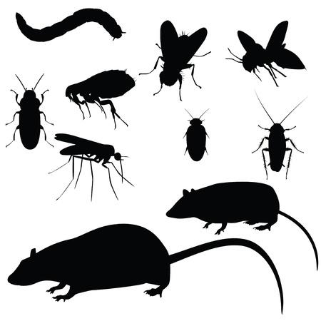 Verzameling van vector ongedierte, silhouetten op witte achtergrond Vector Illustratie