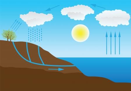 ciclo del agua: Representaci?n esquem?tica del vector del ciclo del agua en la naturaleza