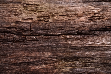 copys pace: old wooden grunge background or texture