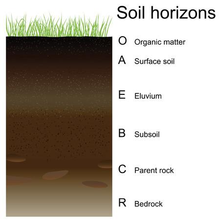 土壌層 (レイヤー) のベクトル図です。簡単版に。  イラスト・ベクター素材