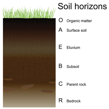 Vector illustration of soil horizons (layers). Easy to edition. Ilustração