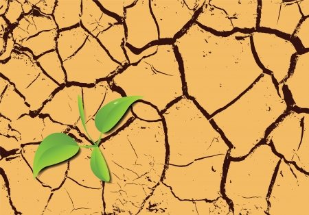 dry land: Plant sprouting in the desert (vector illustration)