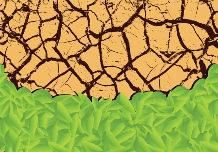 dry land: Plants sprouting in the desert (vector illustration) Illustration