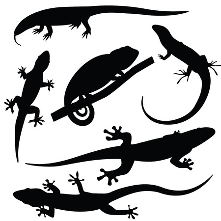 Set of lizards silhouettes, vector illustration Stock Vector - 26559576