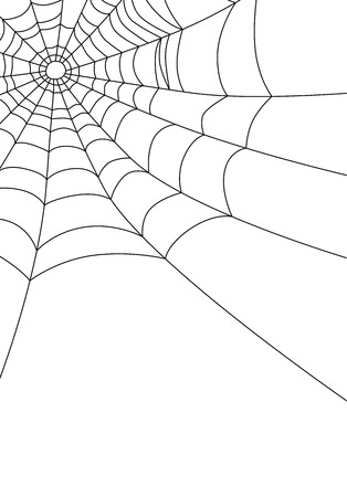 black and white spiders: Spider web isolated on white, vector illustration
