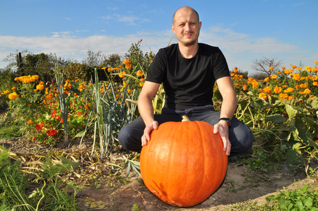 large pumpkin: Man with big pumpkin  in hands. Stock Photo