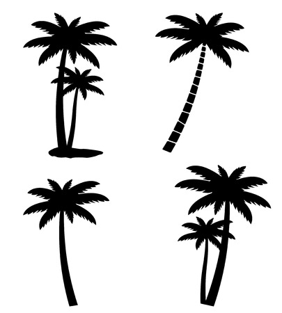 Collection of palm trees isolated on white background, vector illustration