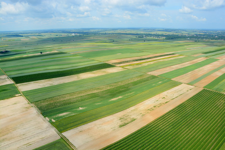 lubelszczyzna: Aerial view of the countryside with village and fields of crops in summer