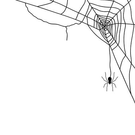 Spider and web isolated on white, vector illustration
