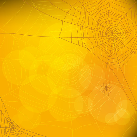 Halloween autumn background with spider web, vector illustration Illustration