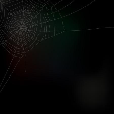 cobwebby: Spider web isolated on dark background, vector illustration