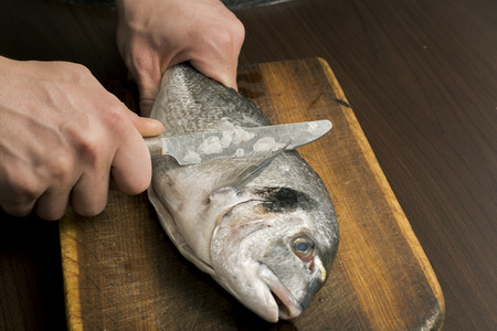 cleaning sea bream fish on a wooden board