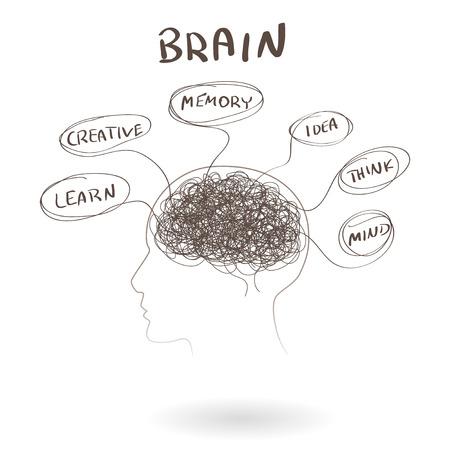 drow: Brain, a thinking human concept. illustration