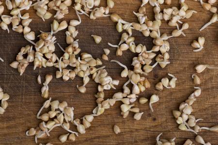 Sprouts of buckwheat groats on wooden table Zdjęcie Seryjne