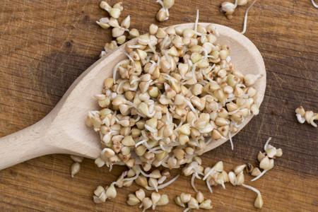 sprouts of buckwheat groats on wooden spoon Zdjęcie Seryjne