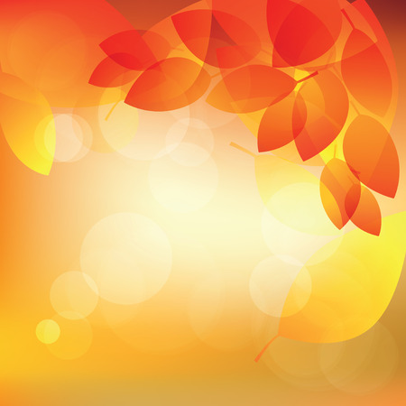 Abstract autumn sunny background with lights and leaves illustration