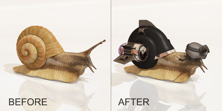 snail, before and after upgrade, 3d rendering