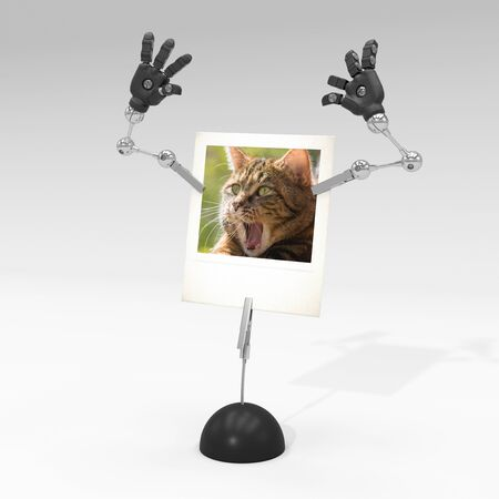 photo of a cat on picture clip holder with articulated arms clipped on it, giving the cat a surprised attitude. Stock fotó