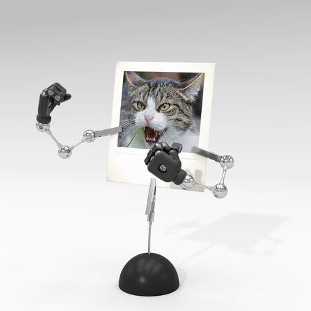 photo of a cat on picture clip holder with articulated arms clipped on it, giving the cat a fighting attitude.