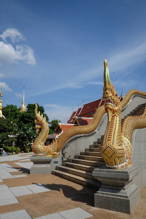 serpents: golden serpent on blue sky in Udonthani Thailand