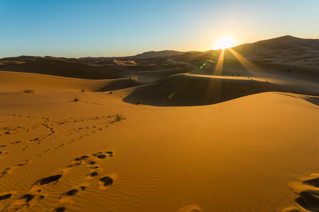 Sunrise over sand dunes in the desert Reklamní fotografie