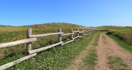 edward: An isolated dirt road through rural Prince Edward Island  Stock Photo